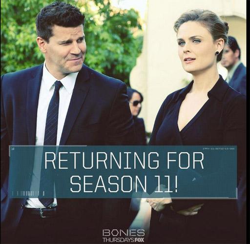FOX signe pour Bones saison 11, la série n'est pas annulée en 2015 / Crédit photo twitter