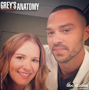Grey's anatomy saison 17