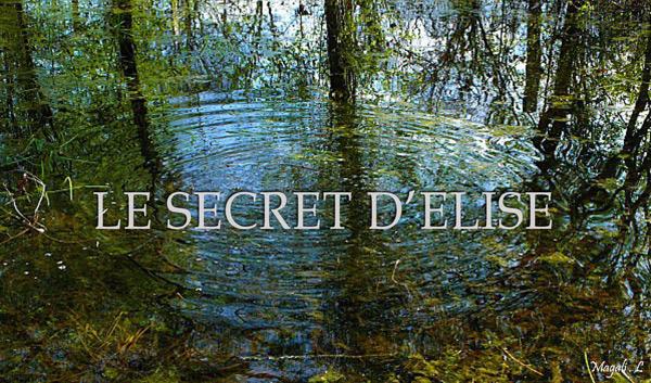 Avis et commentaires sur la mini-série Le secret d'Elise sur TF1