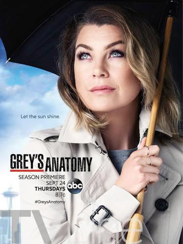 Le poster promo de Grey's Anatomy saison 12 très réussi / Photo ABC-Tvline