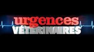 Urgences vétérinaires sur W9 : la nouvelle série le 25 décembre