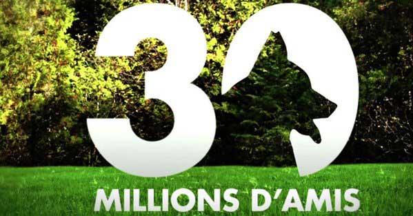 Pétition en ligne pour que 30 millions d'amis continue à la rentrée 2016