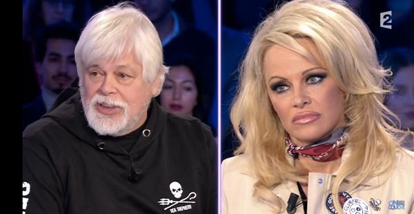 Avis sur Pamela Anderson dans On n'est pas couché chez Ruquier