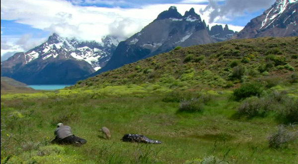 Vos avis et commentaires sur 66 minutes grand format en Patagonie le 05/06/2016