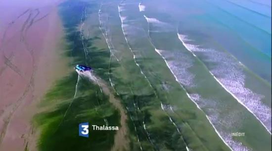 Vos avis sur Thalassa du vendredi 17 juin 2016  : comment sauver la mer ?