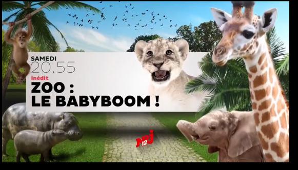 Vos avis et commentaires sur Zoo Baby boom de nRJ12 le document girly (anti-foot lol).