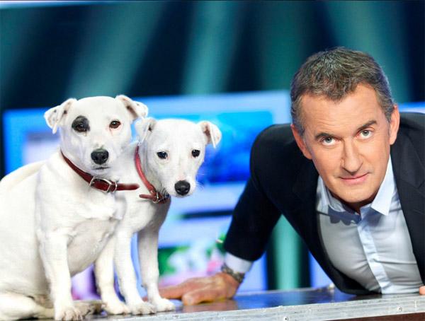 Christophe Dechavanne sur M6 pour A l'état sauvage : prêt pour l'aventure / Photo TF1