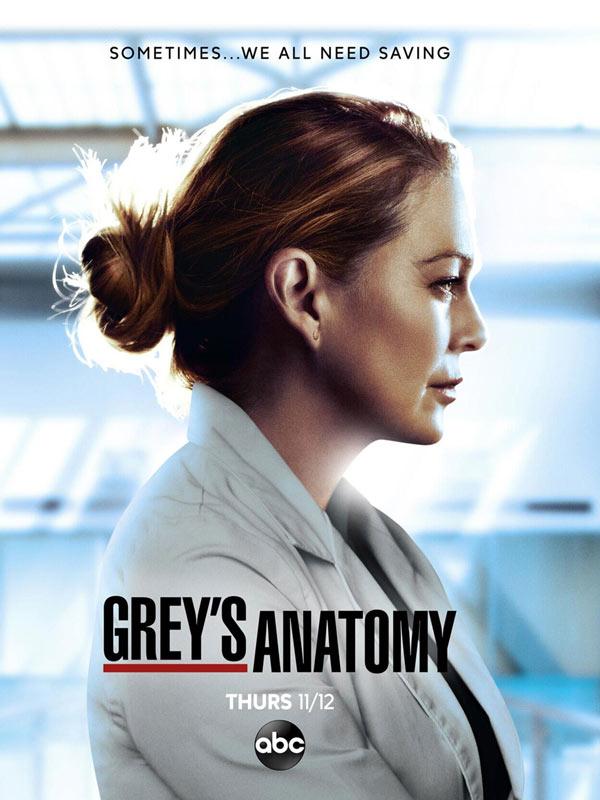 Grey's Anatomy saison 17